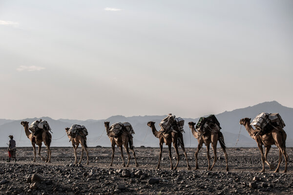 The road between Afar and Tigray passes through some of the most inhospitable terrain on earth.