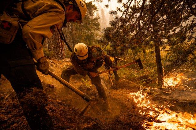 卡爾多大火已經燒過了超過19萬英畝,只有16%的火勢得到了控制。