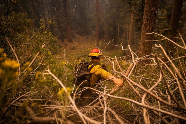 加州消防局隊長凱爾·胡卡寧正從山坡上往下搜尋邁耶斯附近的火災現場。