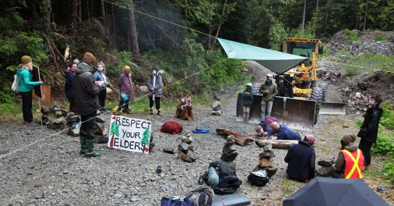British Columbia Judge Ends Protest Injunction at Fairy Creek