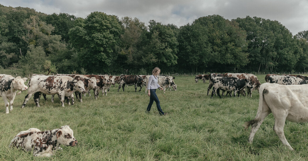 The farmers of France's future are tech-savvy, and want a weekend break