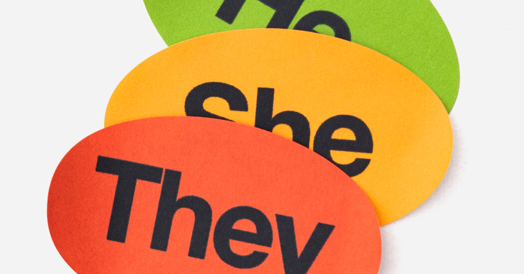 , The Gender-Neutral Pronoun 'They' Causes a Stir, Nzuchi Times National News