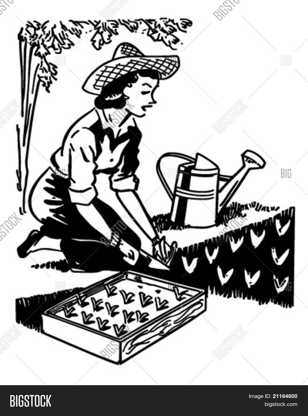 Woman Planting Garden Vector Amp Photo Free Trial