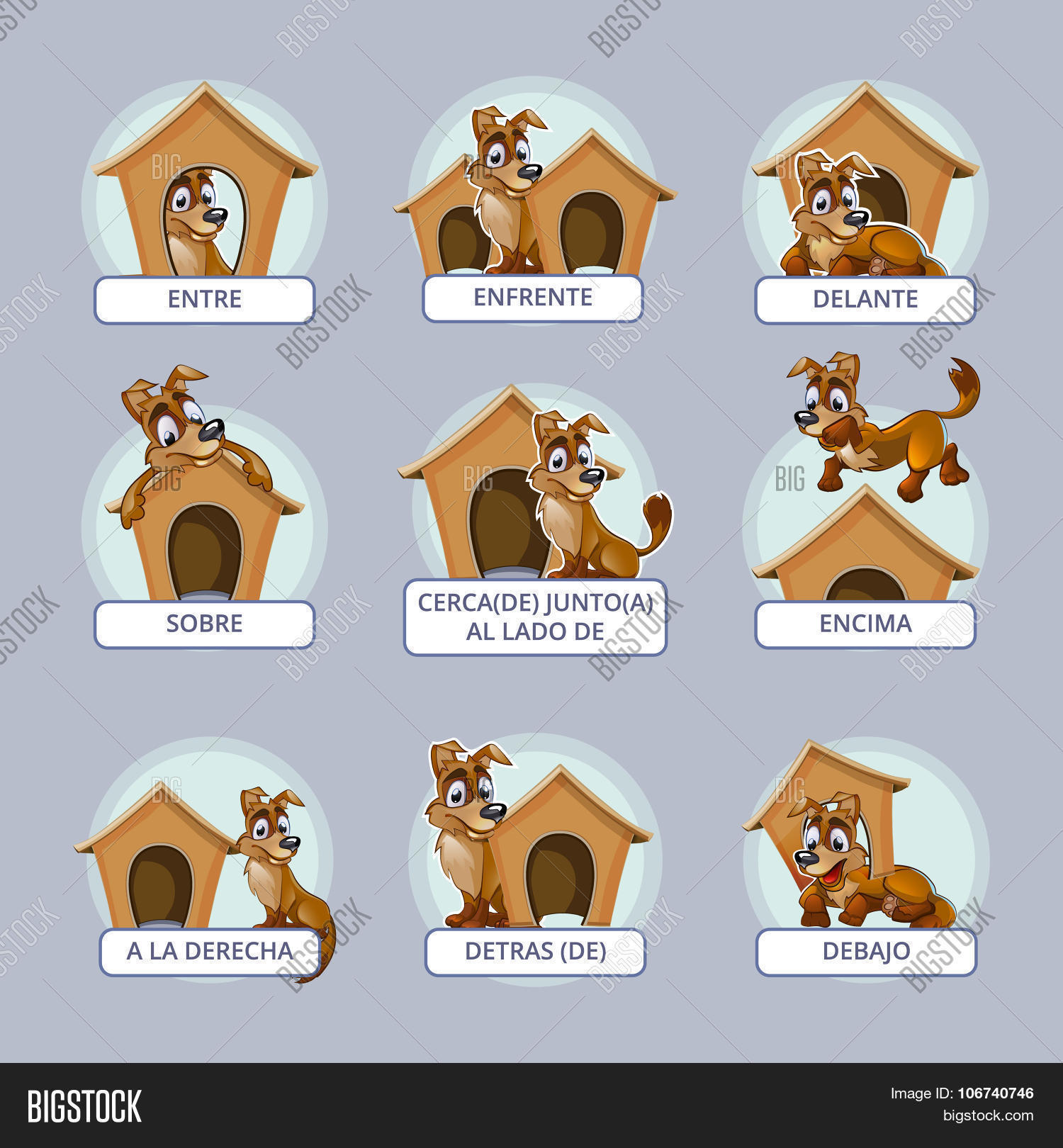 Cartoon Dog In Different Poses To Illustrate Spanish