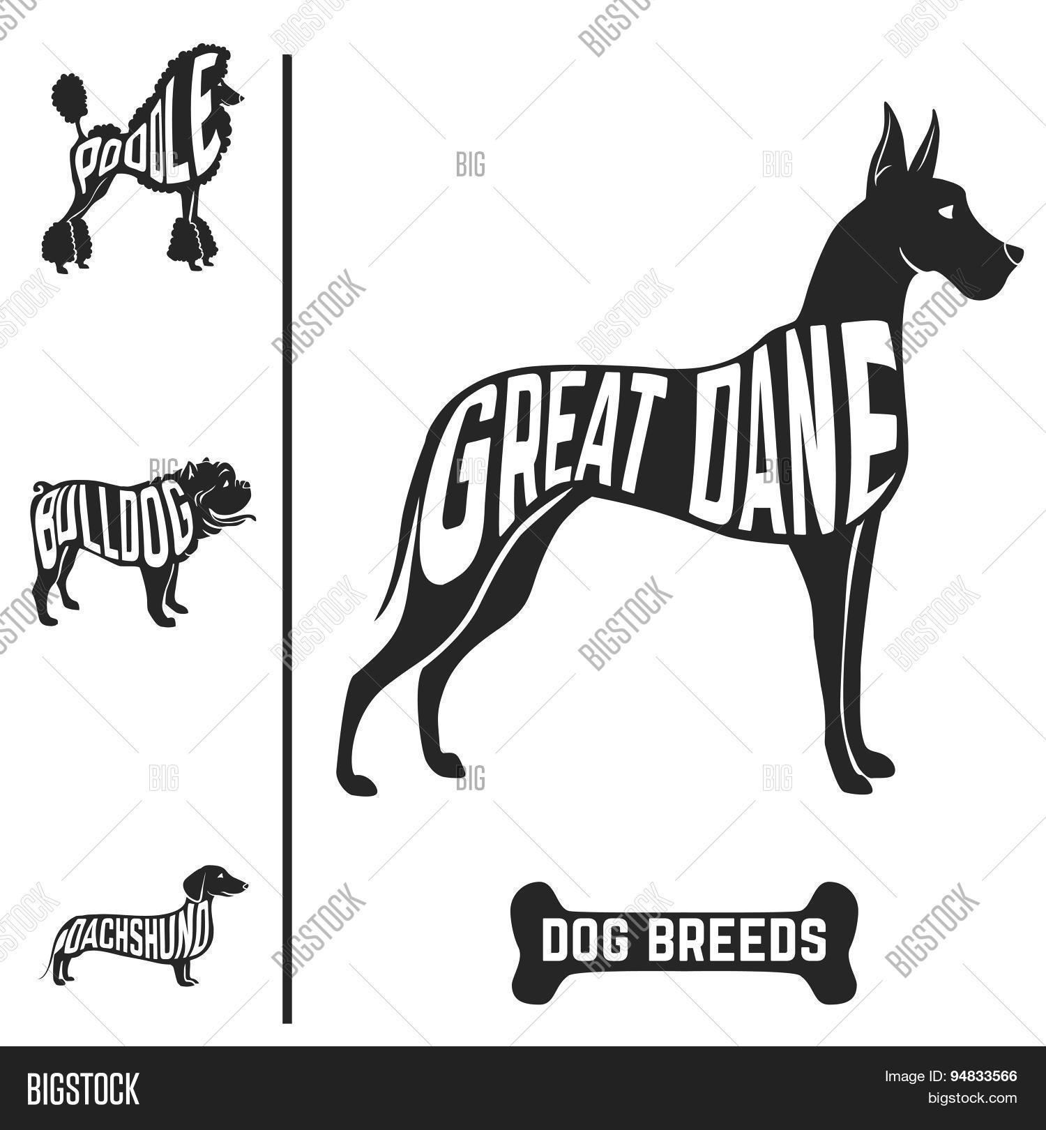 Isolated Dog Breed Silhouettes Set With Names Of Breeds
