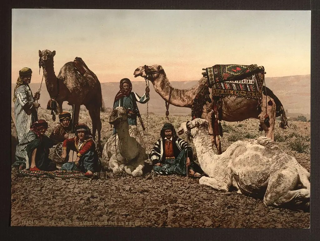 Lots of people traveled around on camels.
