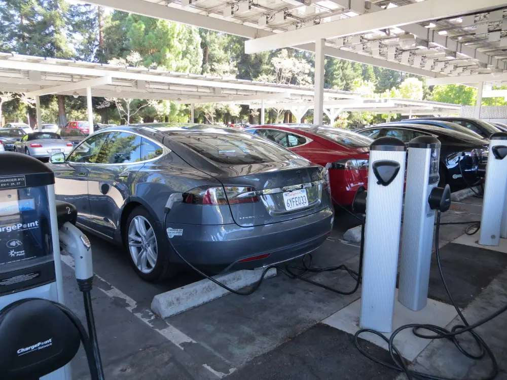 The parking lot was filled with Tesla electric cars. Rows of them.