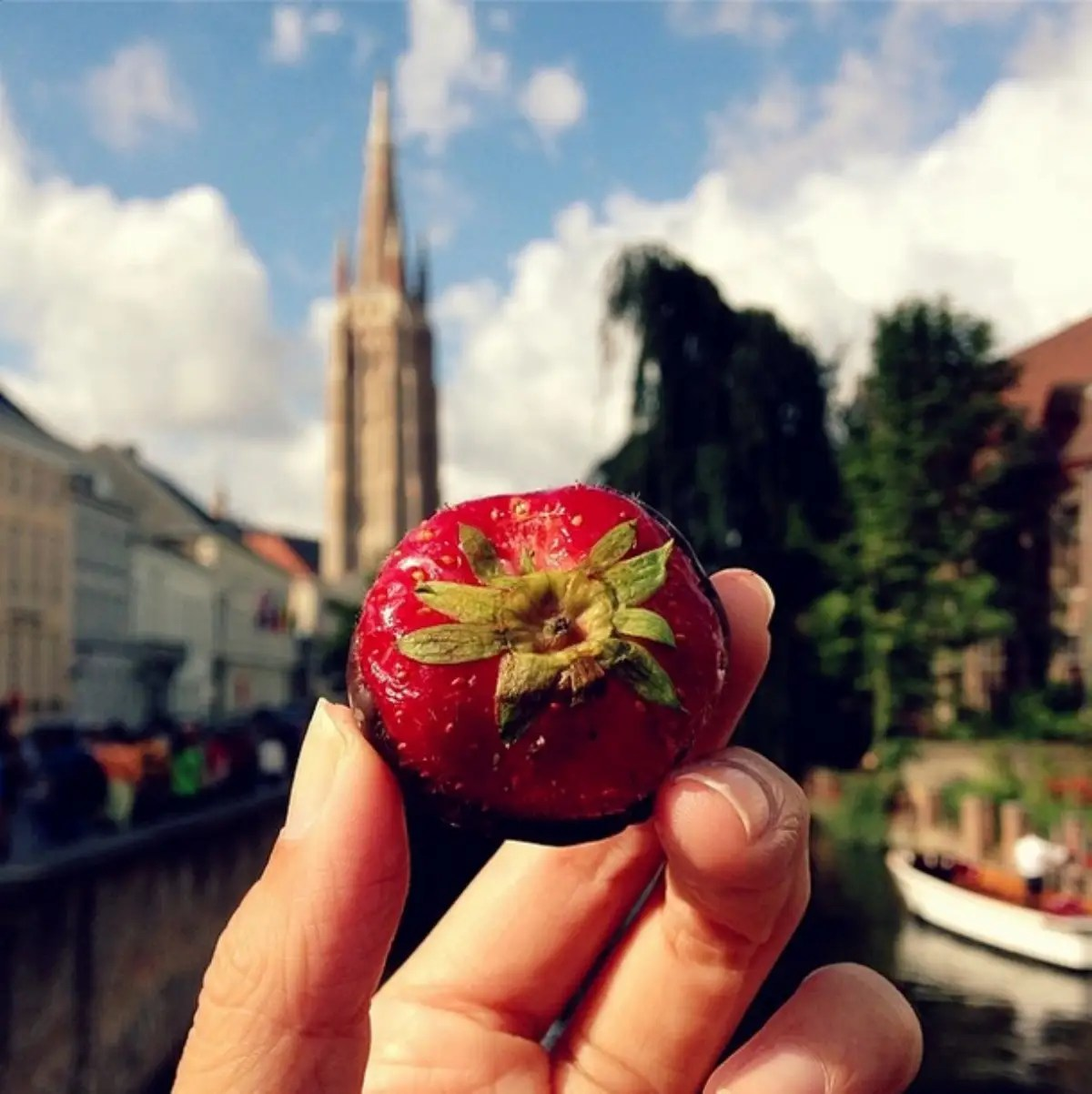 Godiva chocolate strawberry in Brugge, a pretty little town in Belgium that will make you feel like you've just time-traveled 500 years back in time.