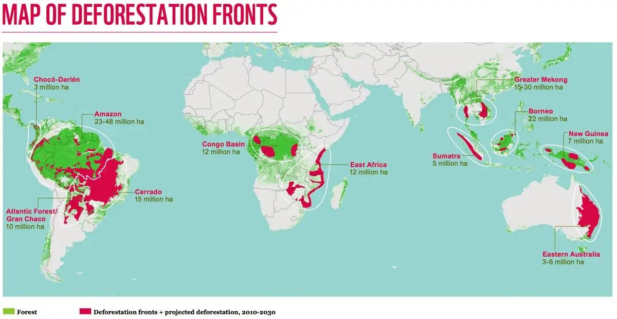 WWF forest loss estimate.