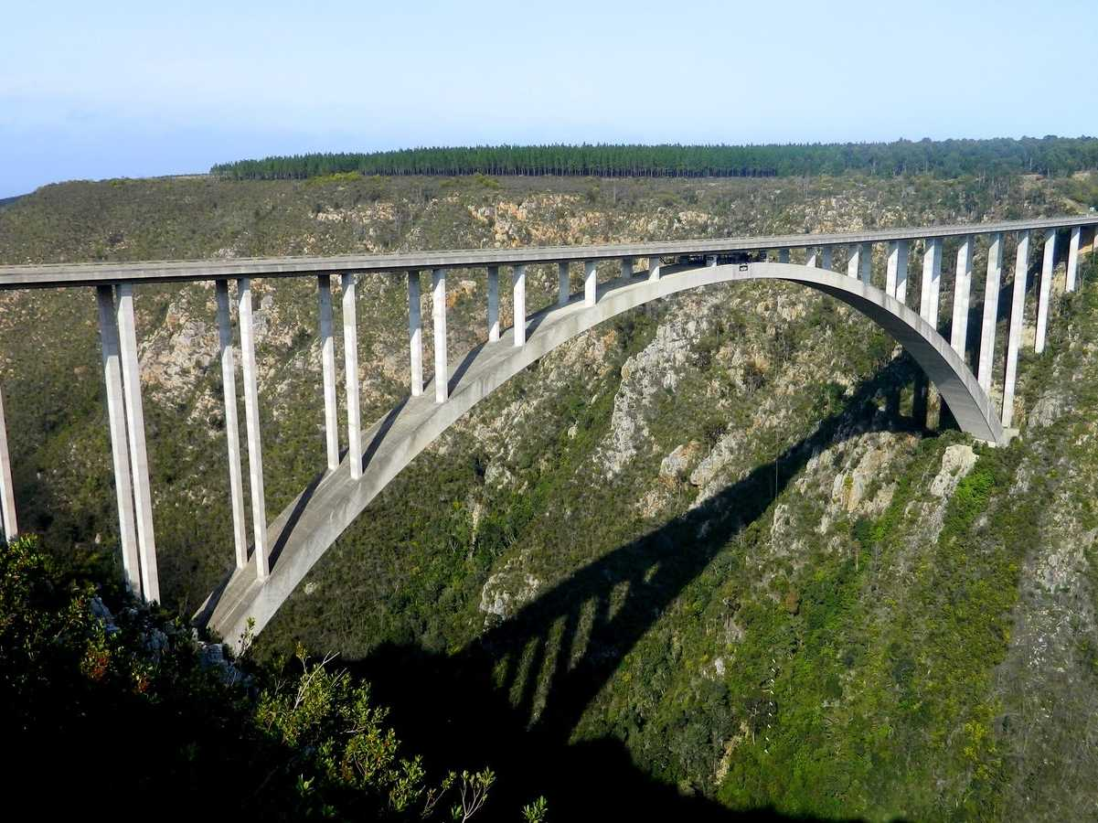 Bungee jump off Bloukrans Bridge, the world's highest bungee bridge located between South Africa's eastern and western capes. You'll fall a whole 709 feet.