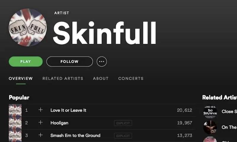 skinfull_spotify
