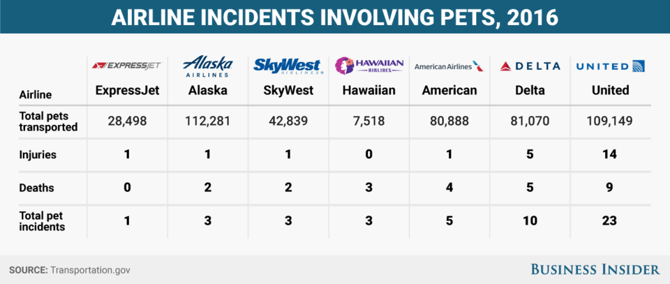 airline incidents involving pets