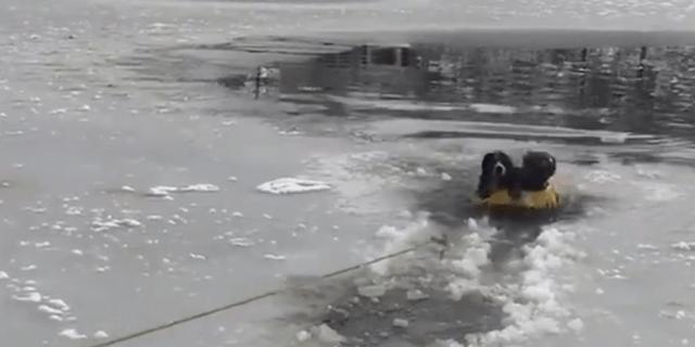 South Metro Fire Rescue dog rescue Ice Colorado