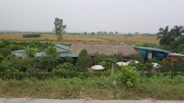 Xây dựng nhà tạm trên đất nông nghiệp được không?