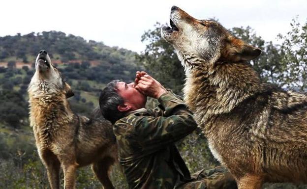 La increíble historia de Marcos Rodríguez Pantoja, el niño salvaje que creció entre lobos y sufre entre los humanos | El Comercio
