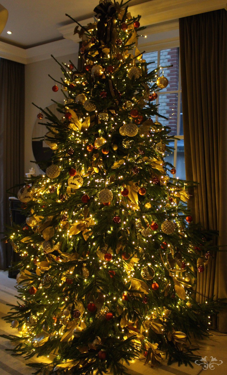 Best Decorated Christmas Homes