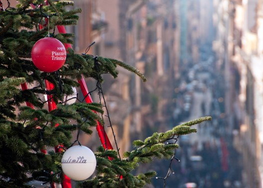 Christmas Tree Close up Rome Italy
