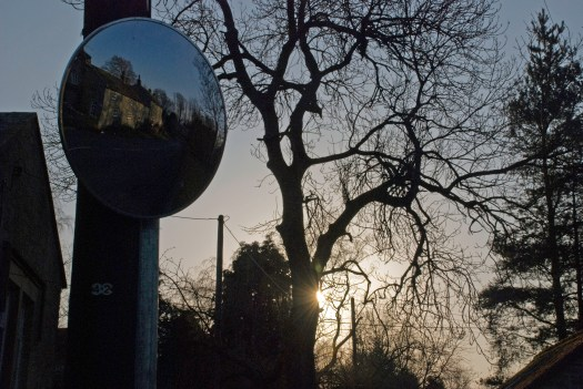 Sunset through trees and mirror
