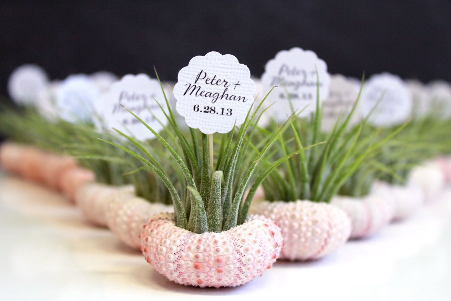 wedding favors     robincharlotte wedding favors