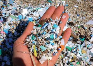 Microbeads pollution – a drop in the ocean for the beauty industry
