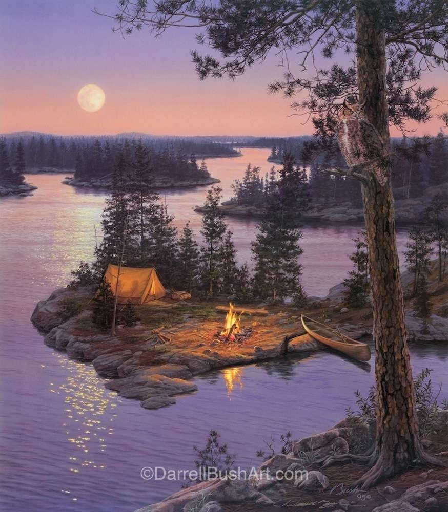 Moondance Darrell Bush Art