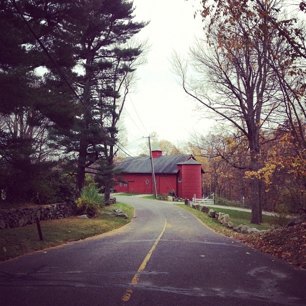 """""""Creating a new theory is not like destroying an old barn and erecting a skyscraper in its place."""" - Einstein #adventure (at The Cottage)"""