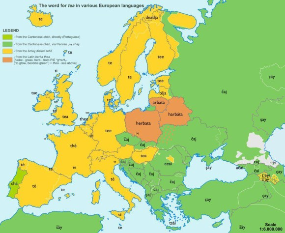 The word for tea in European languages
