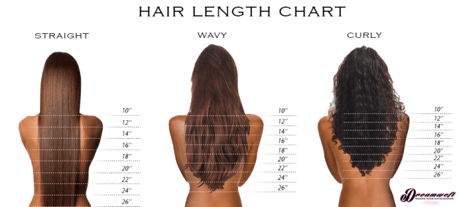 Kinky curly hair length chart the best curly hair 2017 hair extensions faqs length chart lengths and style pmusecretfo Image collections