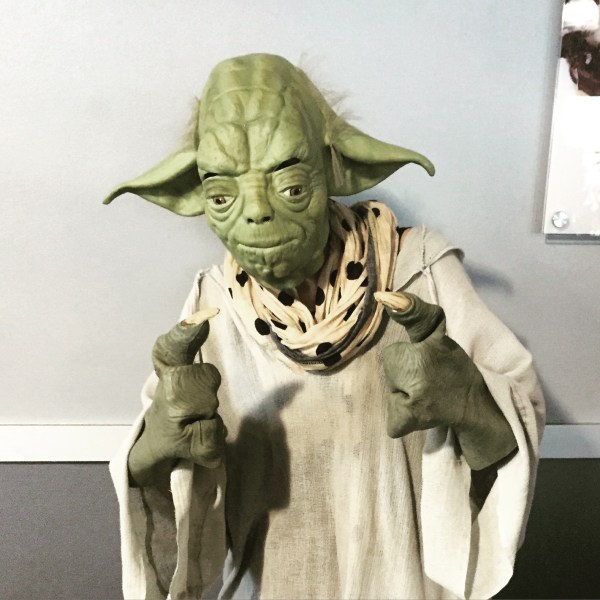 Thought Starters     Jackie Crynes Dressed up in a full Yoda costume for work   WorkYourSpirit