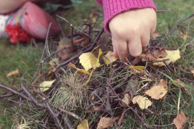 Building a birds nest with kids Dibden Inclosure, New Forest