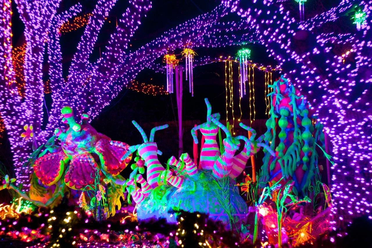Chicago Zoo Lights