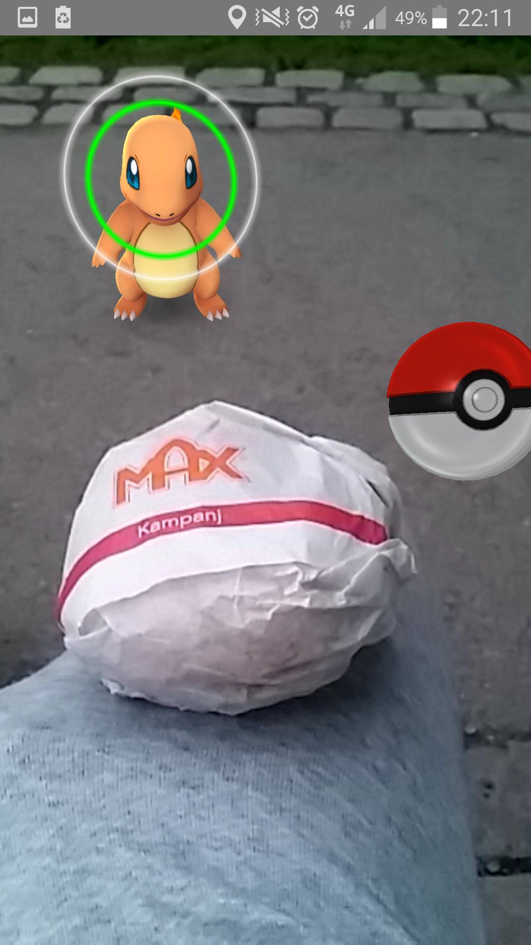 Max, O'Learys, and Pokemon!