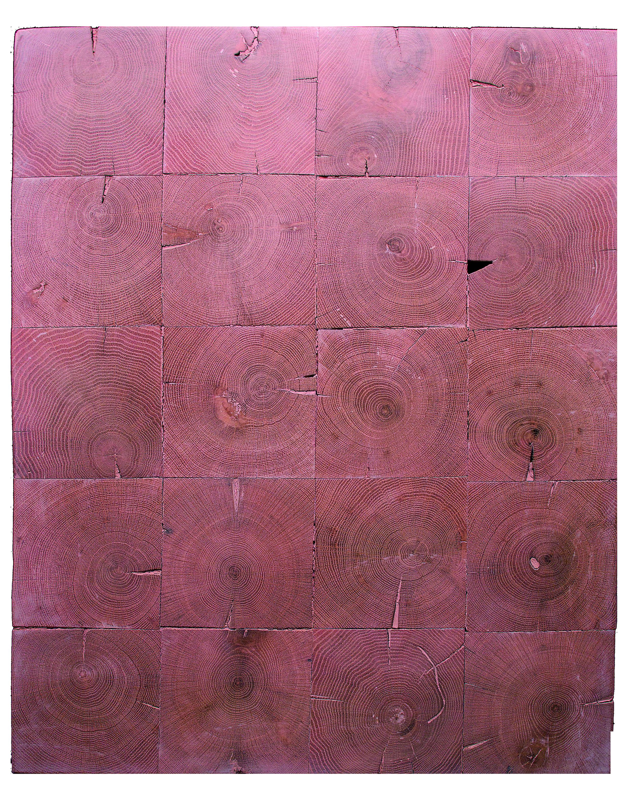 Pg.95 Reclaimed oak end grain (coral pink) EG-010.jpg