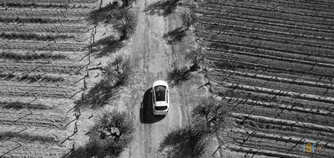 Nuevo+Peugeot+308+%2811%29+%28Copiar%29