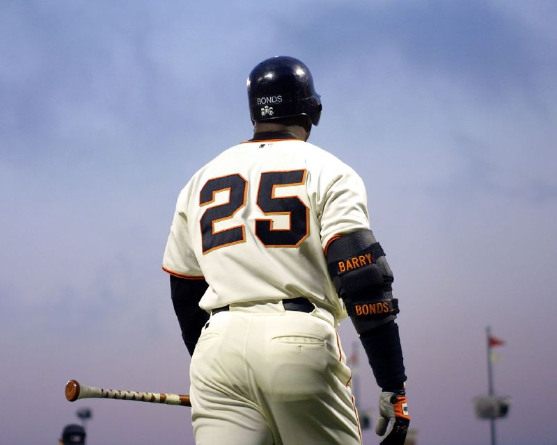 Do steroid users like Barry Bonds (above) deserve to be inducted into the Baseball Hall of Fame? (Stuart Liroff/ Flickr, Creative Commons)