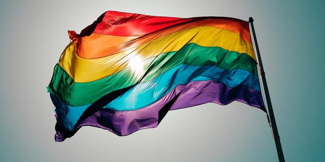 Gay Flag 2.jpg
