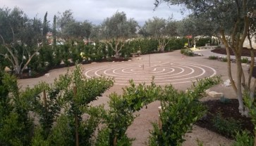 Gardens of Allegretto Vineyard Resort.jpg
