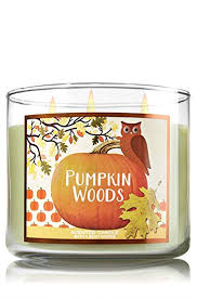 Maybe because I'm not outdoorsy, but the pumpkin in this one was lost on me! I do love the cute owl on the label, so props for that one BBW, just don't put me in the woods because that's not where the pumpkins are....