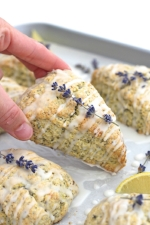lavendar scone.jpg