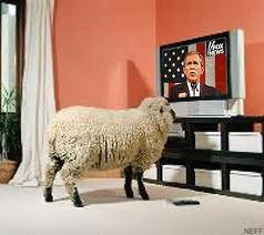 """""""We can make the sheep believe anything""""."""