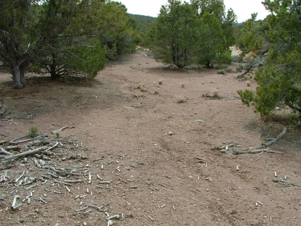 Mismanaged public lands