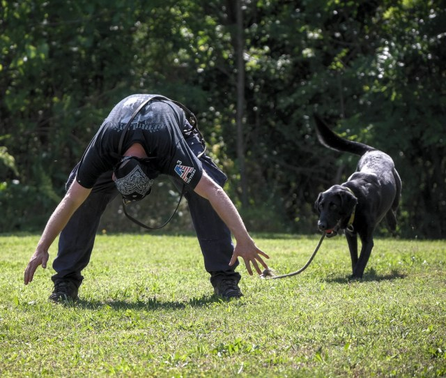 I Tell You All Of That To Remind You Of This Dog Training Is A Dance A Beautiful Choreographed Dance Based On Standard Proven Principles