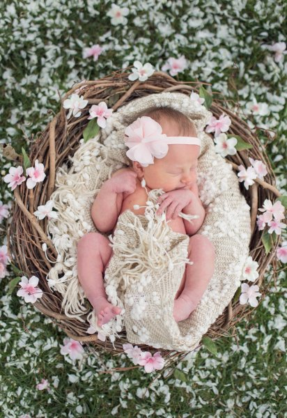 Missoula Newborn Photographer     April Payton Photography Missoula Newborn Photography   Rates