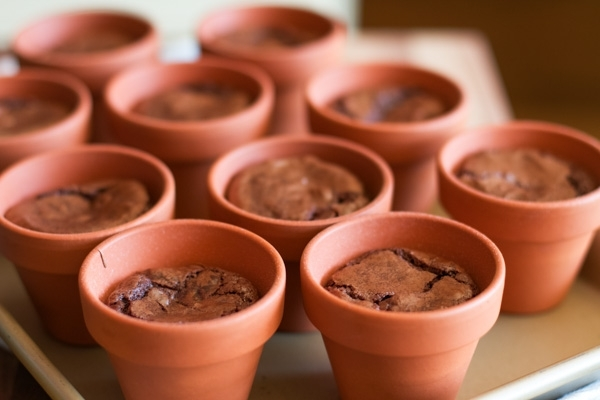 pot-brownies-128257.jpg