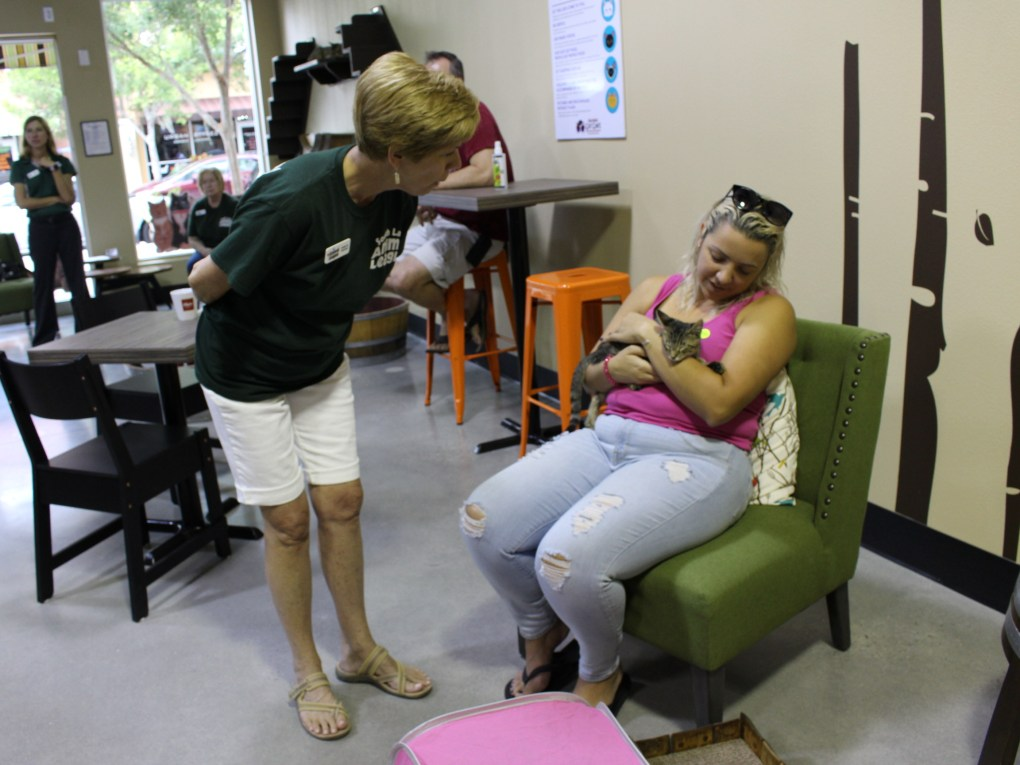 Chris Sims (pictured left) and Tania Ramirez (pictured right) coo over a cat available for adoption at the grand opening of the Orlando Cat Cafe in Clermont. Sims works as a volunteer with The Animal League, the pet adoption service at the cat cafe. Ramirez was one of dozens who played with cats and kittens Thursday.