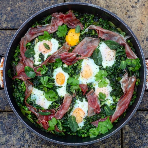 green eggs and ham # 65