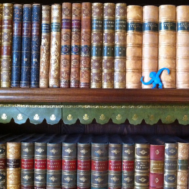Why is there a Blue Plastic Monkey in Library? You'll have to go there and read journal articles to find out... Honestly.