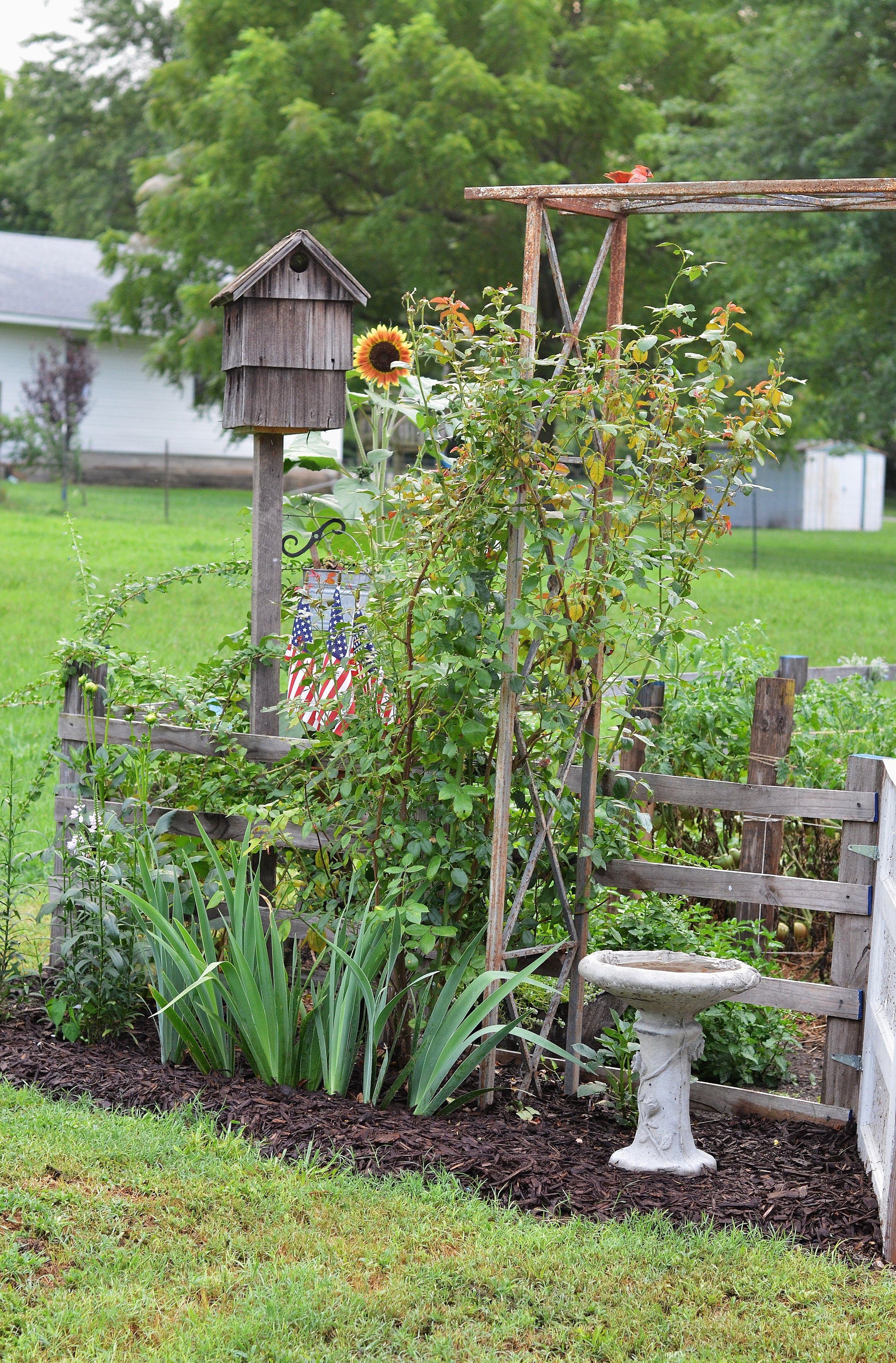 Blog Tips On Creating A Beautiful Garden Flat Creek