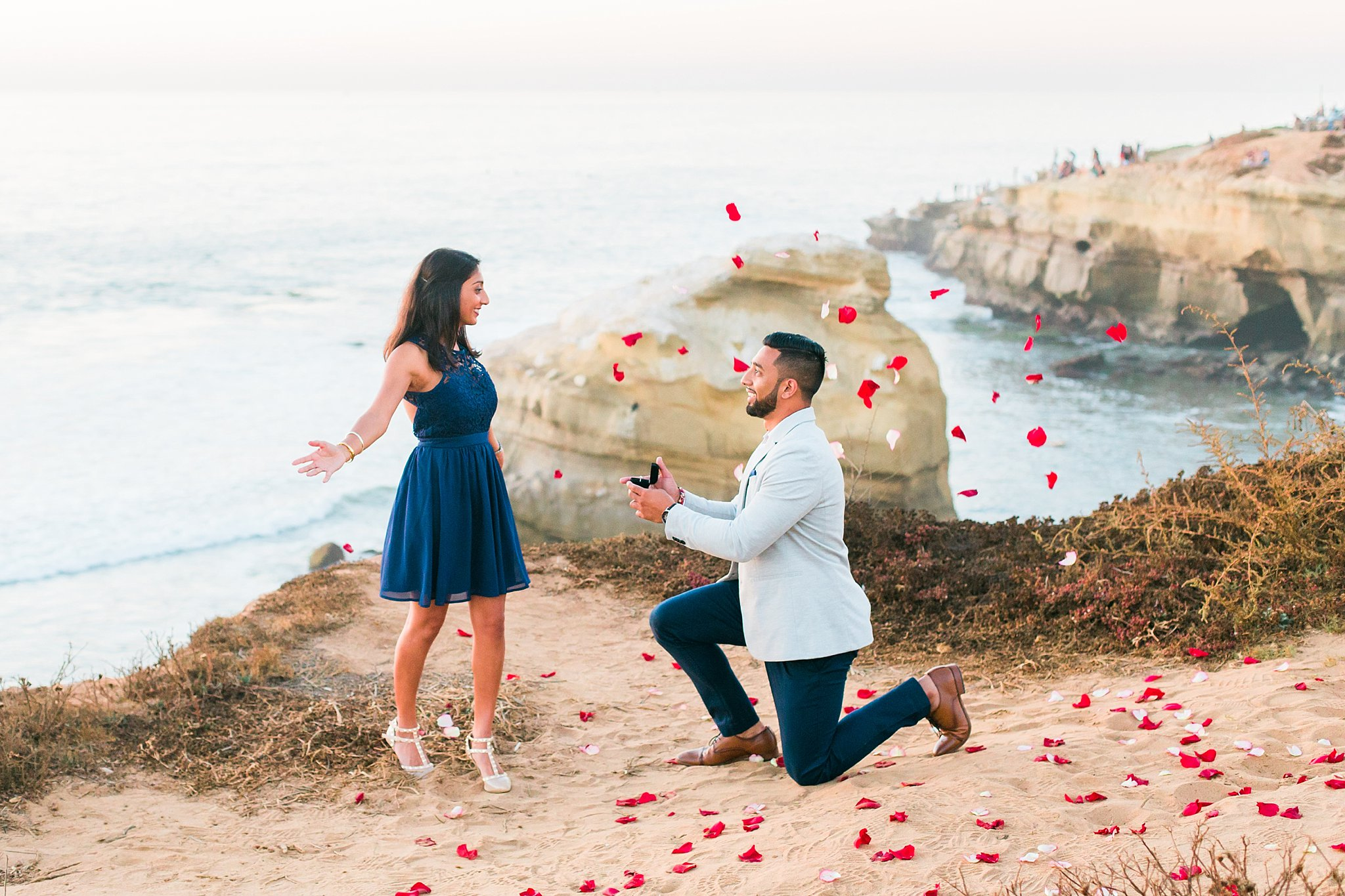 Sunset Cliffs Surprise Proposal   Shreya and Sagar   San Diego     Sunset Cliffs Surprise Proposal   Shreya and Sagar   San Diego Surprise  Proposal Photographer     Jax Connolly