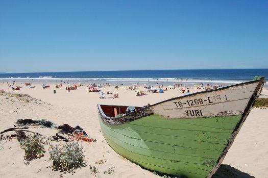 How Does Tourism Impact Ocean Health? Coastal Development — Sea Going Green